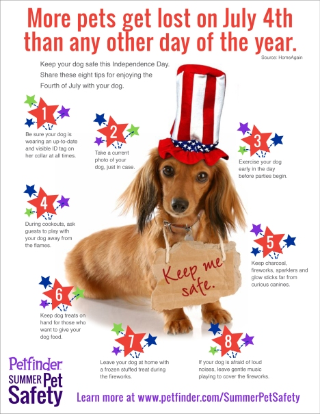 July4thDogs